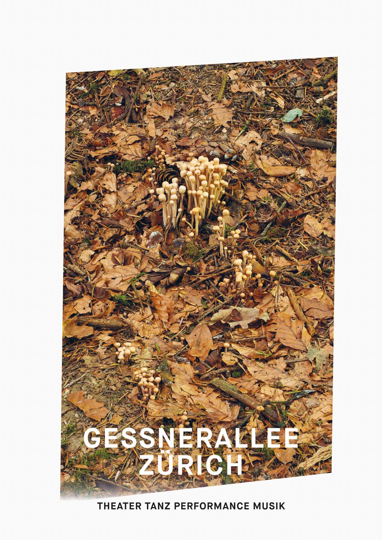 008_Gessnerallee_www.schaubstierli.com