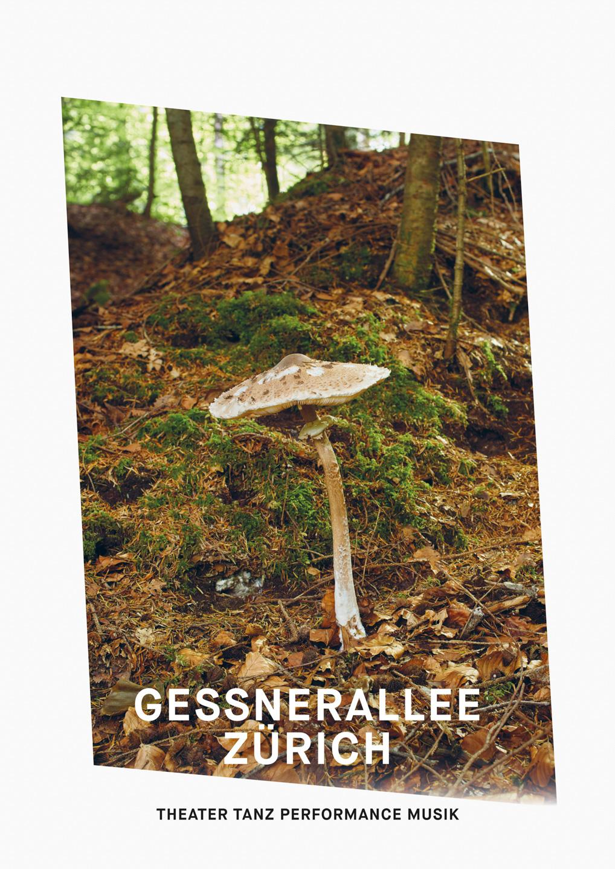 011_Gessnerallee_www.schaubstierli.com