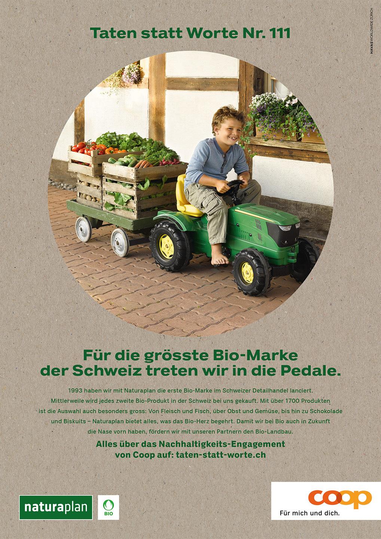 004_Coop_www.schaubstierli.com