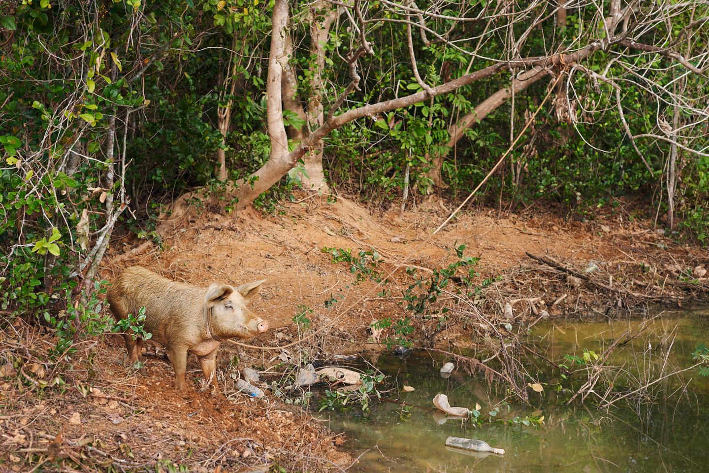 004_Cuba_www.schaubstierli.com
