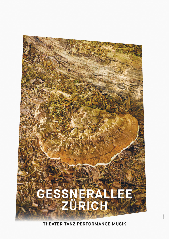 001_Gessnerallee_www.schaubstierli.com