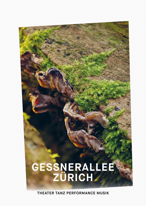 004_Gessnerallee_www.schaubstierli.com