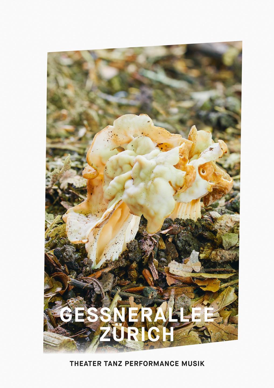 009_Gessnerallee_www.schaubstierli.com