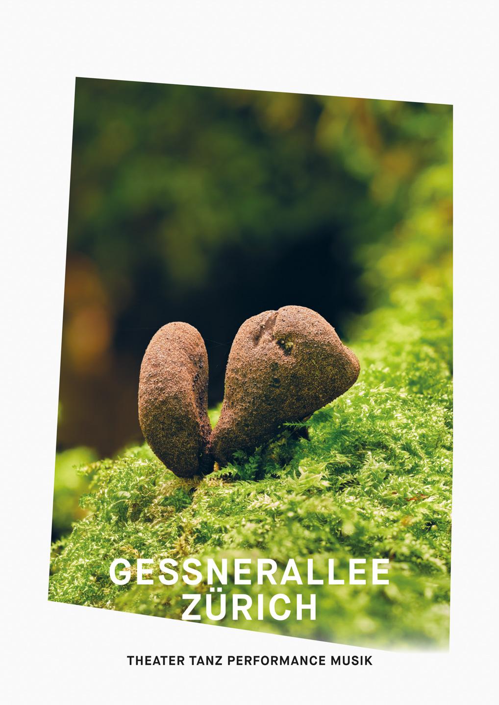 012_Gessnerallee_www.schaubstierli.com